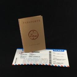 Invitacion de Boda pasaporte y tarjeta de embarque
