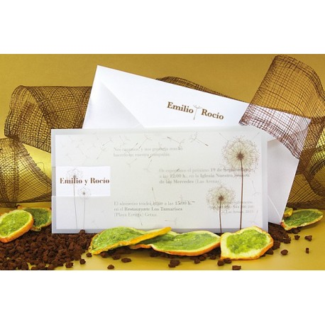 Invitacion de boda diente de leon trasparente